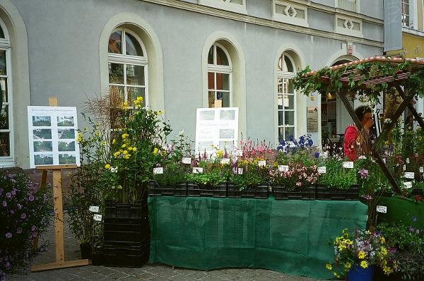 Bauernmarkt-Speyer2010