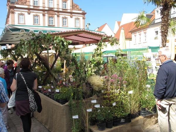 Bauernmarkt-Speyer2012